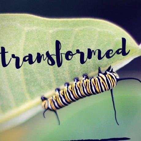 Transformed - Part 3
